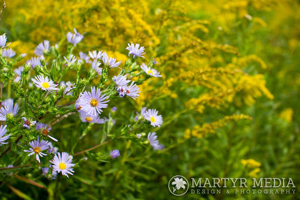 flowerspohickery